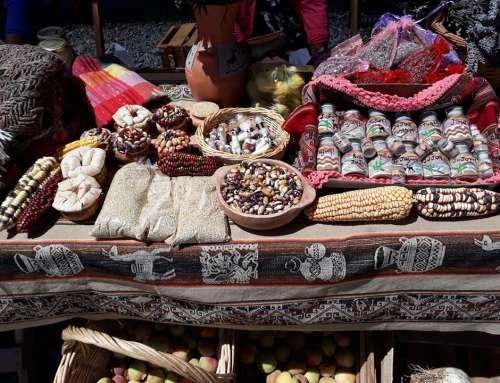 Productores, destrezas criollas, artistas y comparsas en Tumbaya